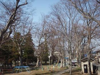 20080411-3.jpg